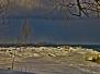 Jack Darling Park 2014-02-15